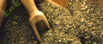 чай мате для курильщиков